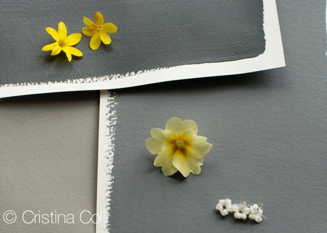 Vignettes_Spring_0050