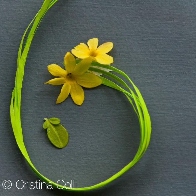 Vignettes_Spring_2-2