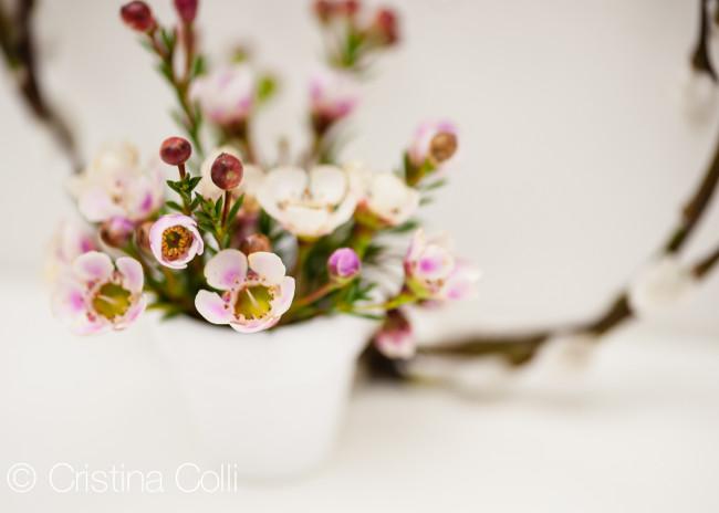 ColliC_GatheringsMag_Spring2014_005