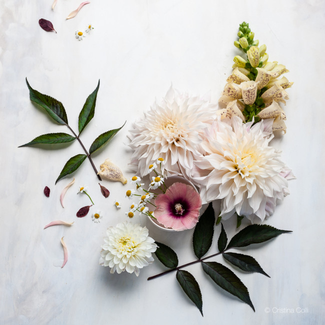 styling and floral photography © Cristina Colli