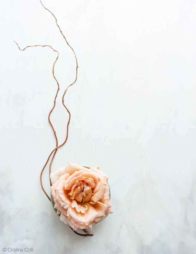 web_peach_rose_elderflower_02