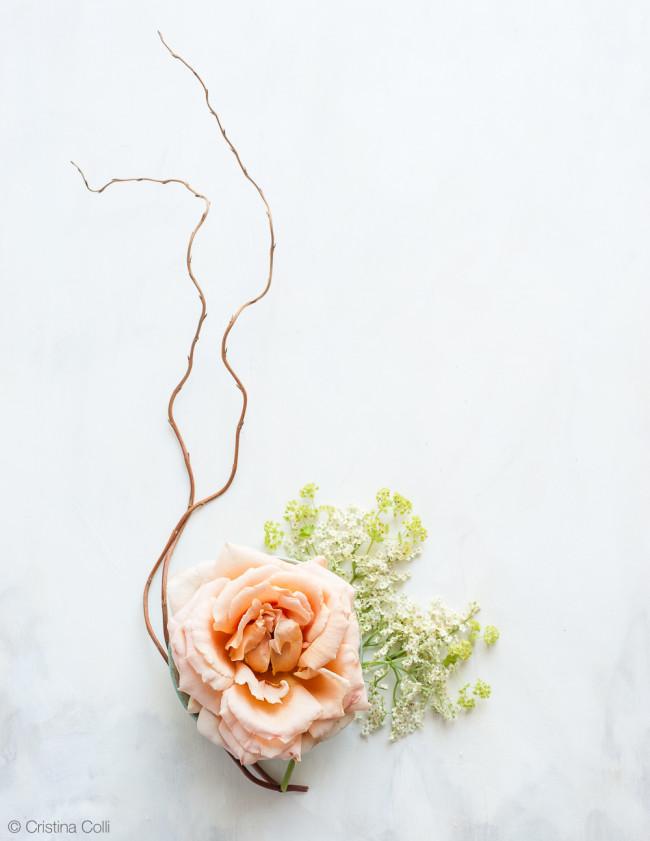 web_peach_rose_elderflower_04