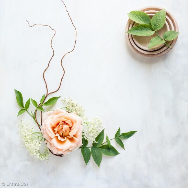 web_peach_rose_elderflower_13