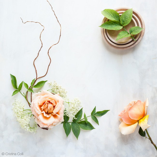 web_peach_rose_elderflower_14
