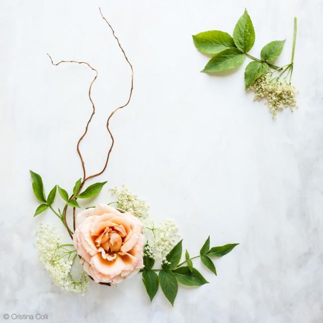 web_peach_rose_elderflower_16