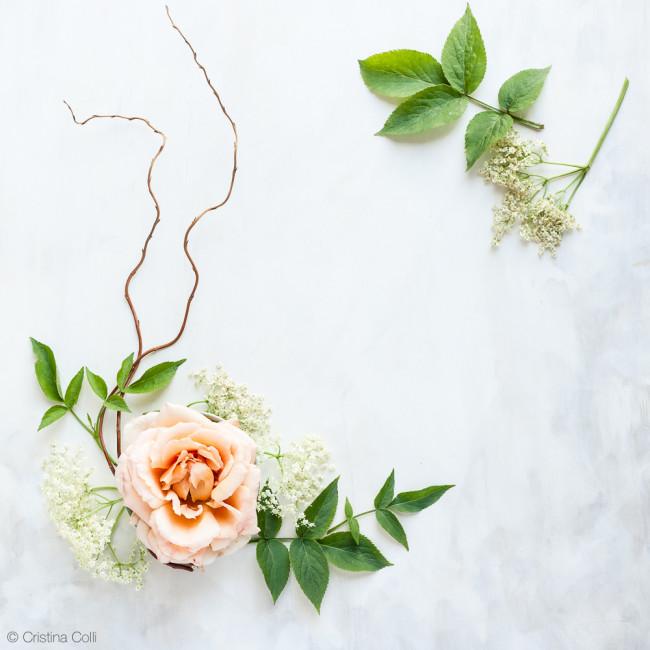 web_peach_rose_elderflower_17
