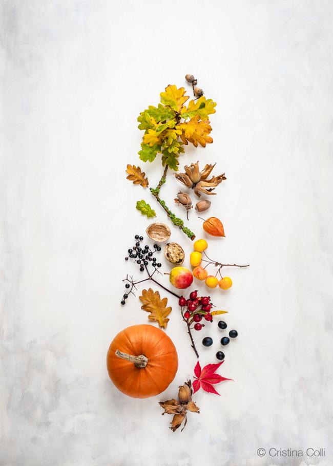 October_CCseasonal_146