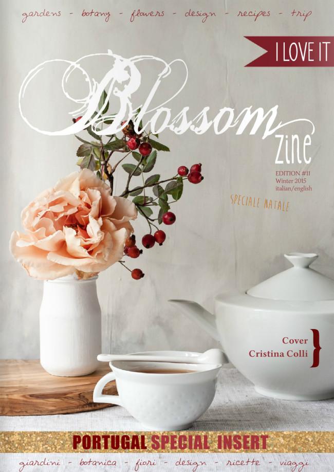 Blossomzine_winter15_cover