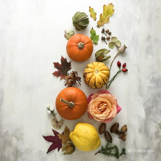 November botanical flatlay 1
