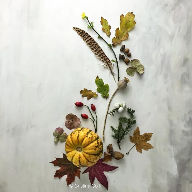 November botanical flatlay 3