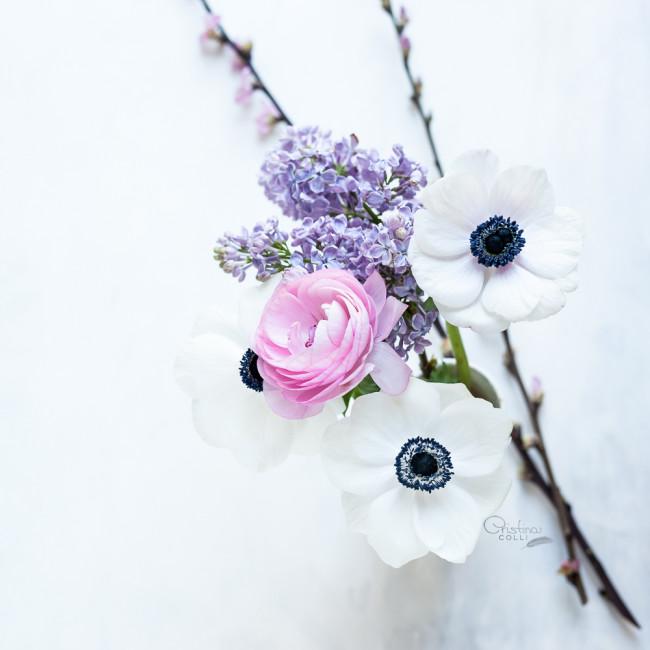 anemones_blossom_ranunculus_001