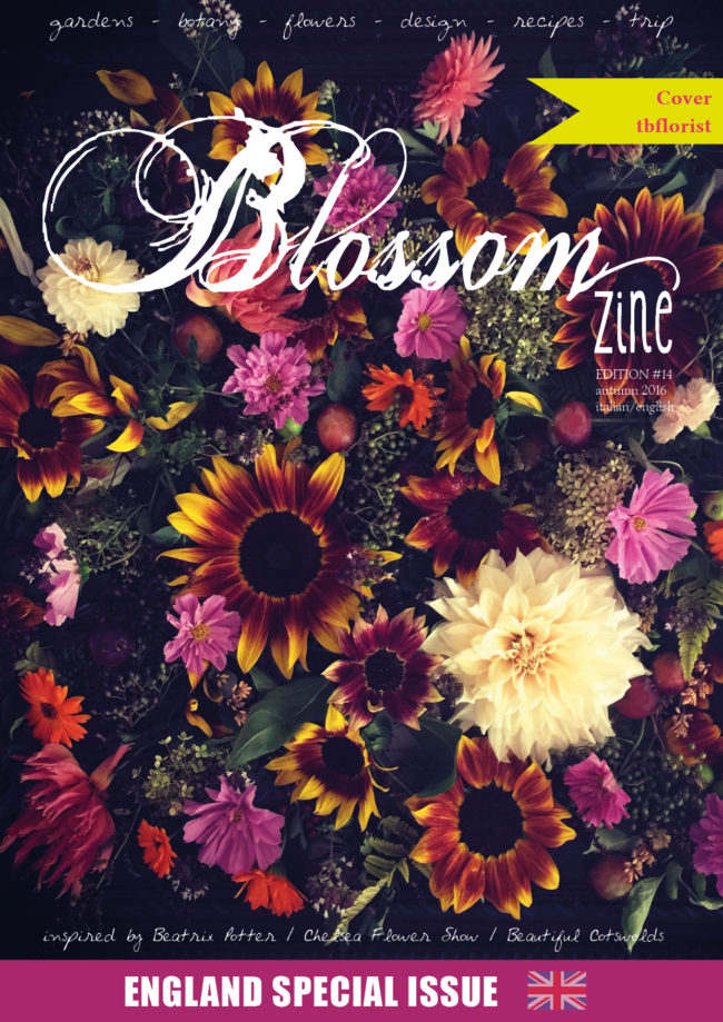 n-14-autumn-2016-blossom-zine-cover