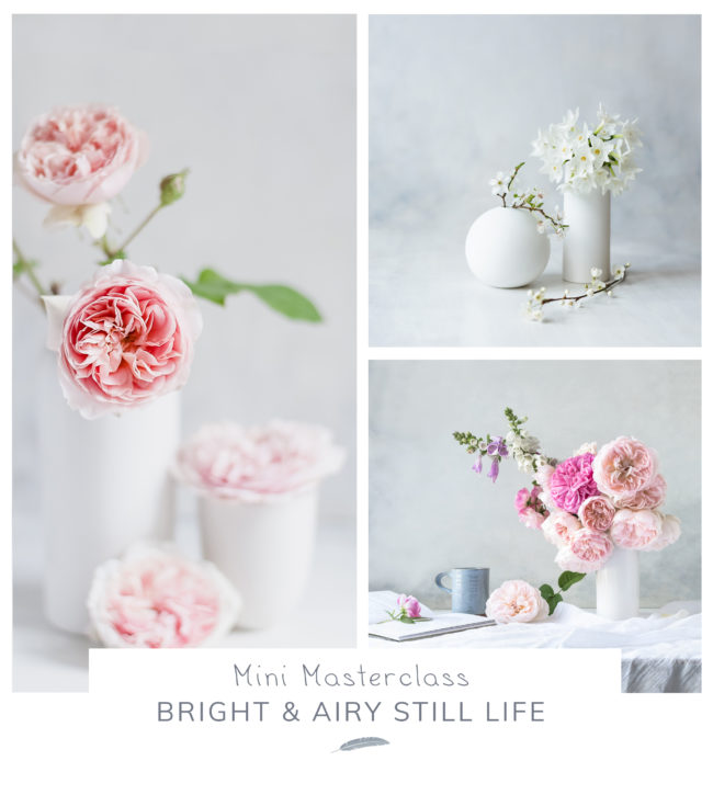 Bright and airy still life photography